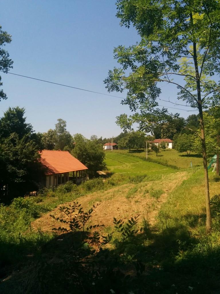Organska farma Grujičić